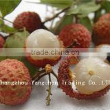 2014 New Crop Canned Fruit with Good Taste Canned Lychees