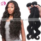 Body Wave High Quality Wholesale Price Brazilian Virgin Hair Extension