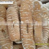 Dried Sea Cucumber ( Elephant trunk fish)