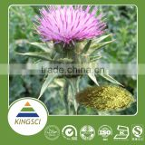 Factory Supply Milk Thistle Powder Extract Water Soluble Silymarin 80%Milk Thistle Extract