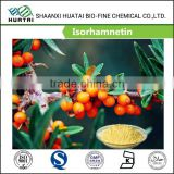Bulk Supply Beauty&Personal Care Products Isorhamnetin Extract