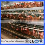 A type 4 layers automatic feeding system electric chicken cage layer type (Guangzhou Factory)