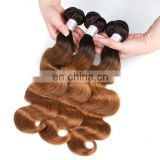 ombre Brazilian hair weaves two tone ombre hair extensions body wave T1b/30 free sample