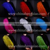 Wholesale dyeing 26-28inch ostrich feathers south africa for party