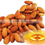 Bulk Sweet Almond Oil Factory Wholesale Almond CO2 Extraction Vegetable Oil Plant Oil For Healthcare