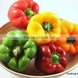 Fresh Bell Pepper- Capsicum With High Quality From Vietnam