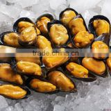 seafood bleu mussel in half shell
