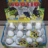 Growing Hatching Beetle Egg Toy