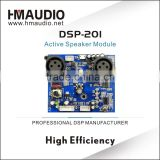 Inquiry about High Quality Professional Module for Speakers DSP201