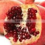 High quality of Egyptian pomegranate