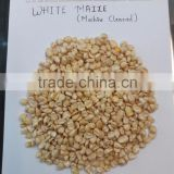 Reputed Manufactures , Exporters Supplying White Maize at a reasonable price.