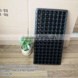 105 Cell PS Material Plastic Tomato Nursery Seed Germination Tray for Agriculture Vegetable Seedling Purpose
