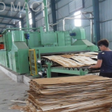 wood veneer dryer machine