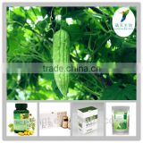 Hot sales Balsam Pear Bitter Melon Extract Powder 20% Charantin