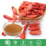 Manufactuer supply Barbury Wolfberry fruit extract/ Goji berry extract in bulk