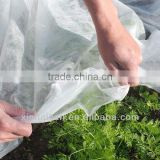 High quality UV Treated Agriculture Biodegradable PP Spunbond Nonwoven Fabric Garden Fleece/ Weed Control/ Ground Cover Sheet