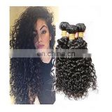 Deep Curl Best Selling Good Feedback Virgin Brazilian Human Hair Bundles brazilian virginhair weaving