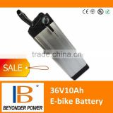 Electric bike battery, 36V10Ah rechargeable lithium ion silver fish battery with BMS , charger