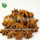 nature star aniseed oil