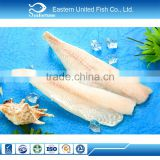 Wholesale Food Frozen cheap hake fish fillet