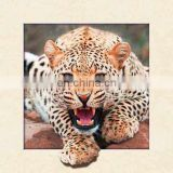 New arrival PET 40x40cm lenticular 5D poster with frame