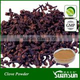 Organic Spices Extract Clove Extract in Bulk
