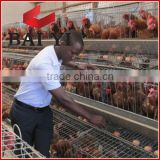 Types of Battery Cage System With Trade Assurance