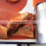 mackerel fish in metal tins with fresh raw material best price