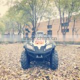 INQUIRY ABOUT 400cc Type and Manual Transmission Type 400cc dune buggy ATV