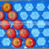 Plastic container punnet (colorful, for pear,mango, Apple)