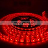 Constant Current Waterproof SMD 5050 2835 3528 5630 5730 LED Flexible RGBW RGB LED Strip