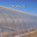 GREENHOUSE FILM - CROPACK 200