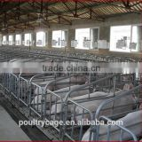 Wholesale Pig Farming Equipment/Pig Feeding Equipment/Pig Equipment