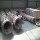 Factory Price Hot Dipped Galvanized Steel Wire