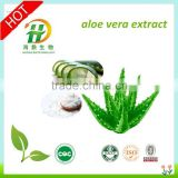 aloe vera gel freeze dried powder