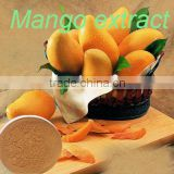 African Mango Seed Extract powder of Mangiferin