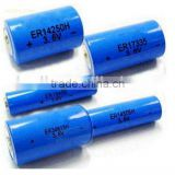 Primary lithium batteries Li-SOCl2 Energy type AAA size ER10450