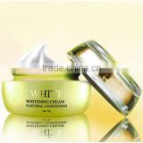 Top Brands Best Anti-aging and Moisturizing skin care whitening product secret white cream