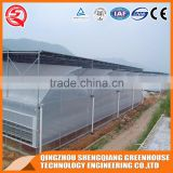 Agriculture farming/equipment greenhouse plastic film for plant vegetable and flowers made in China