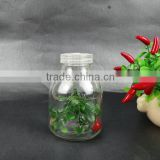 Tissue culture vessels jar with plastic cap