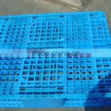 made in CHINA hot sale Euro style HDPE new material recycled pallet display