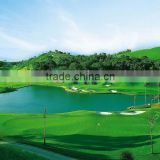 golf putting green mat high anti-uv anti-fire artificial grass with high quality and cheap price
