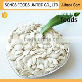 pumpkin kernel type Best Quality In China Market