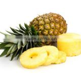 pineapple canning production line