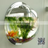 Promotional wall mounted acrylic fish aquariums Hottest large acrylic wall mounted hanging fish bowl aquarium                                                                         Quality Choice