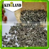 Dried and raw sunflower seeds sunflower seeds turkey market price best quality