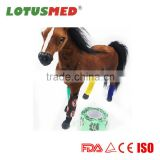 Horse Therapeutic Vet Wrap Flexible Cohesive Bandage for Horse