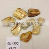 White Natural Baltic amber stone 50-100 (polished)