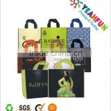 Fashional lamination non woven gift bag