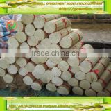 "Low price Round bamboo sticks 8""; 9"" for making incense from GOWELL., JSC, VietNam"